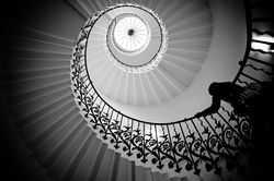 Up the golden spiral