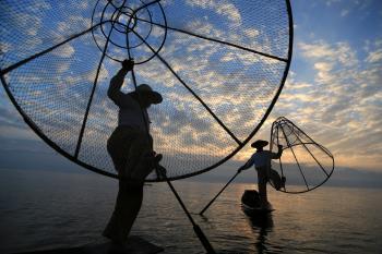 Dream Fisherman
