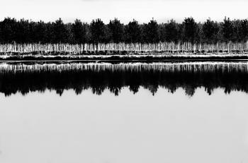 Riflessi in bianco e nero