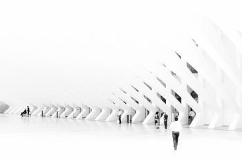Calatrava in white