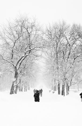 winter Moscow
