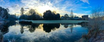 Winter Morning - Syon House Gardens