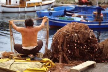 Fish market in Pozzuoli (1985)