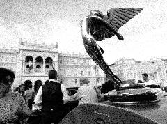 Il volo di Isotta