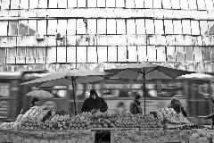 Il fruttivendolo di Sarajevo